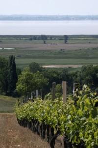 Paysages et patrimoines de l'estuaire de la Gironde, d'une rive à l'autre