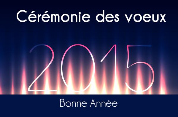 Voeux du Maire 2015